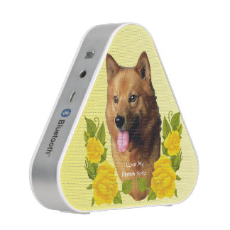 Finnish Spitz with Yellow Roses
