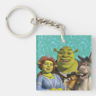 Fiona, Shrek, Puss In Boots, And Donkey Key Ring
