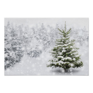 Fir Tree In Thick Snow Poster