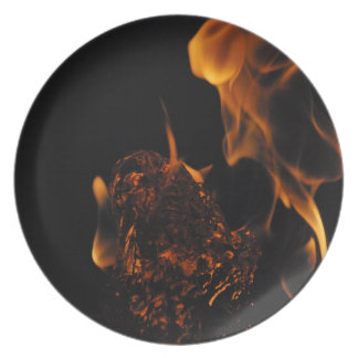 Fire and Water Plate