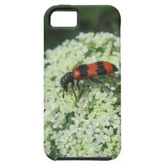 Fire Bug iPhone 5 Covers