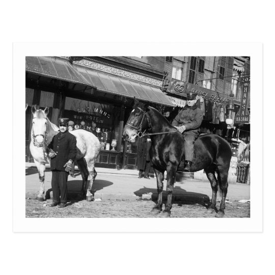 Fire Engine Horses, 1910 Postcard