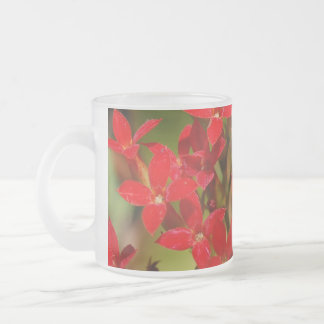 Fire Flower Frosted Glass Mug