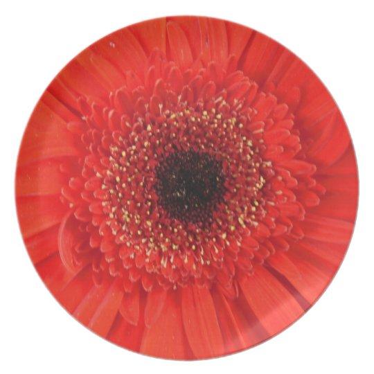 Fire Flower Plate