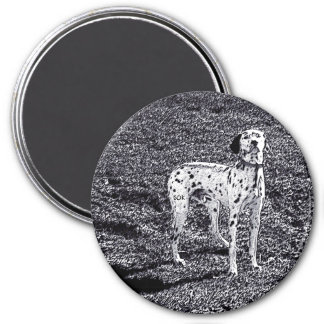 Fire House Dalmatian Dog in Black and White Ink 3 Inch Round Magnet