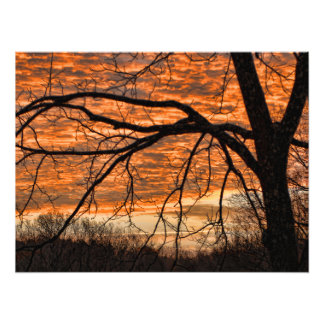 Fire in the Winter Morning Sky Photo Print
