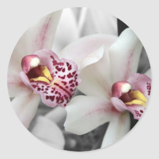 Fire Orchid Classic Round Sticker