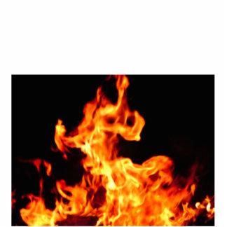 FIRE PHOTO SCULPTURE BADGE