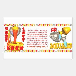 Fire Snake zodiac born 1977 Aquarius Rectangle Sticker