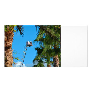 fire truck ladder against sky framed palm trees photo card template