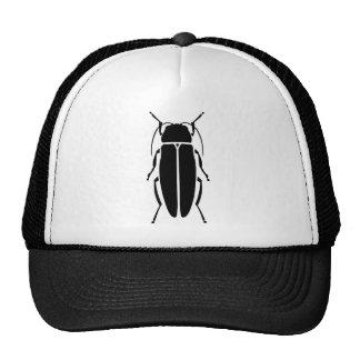 Firefly Cap