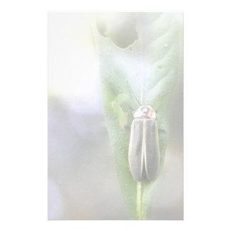 Firefly - Photuris Pyralis Custom Stationery