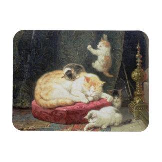 Fireside Bliss (oil on panel) Rectangular Photo Magnet