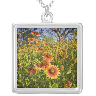 Firewheels Gaillardia pulchella) wildflowers Square Pendant Necklace