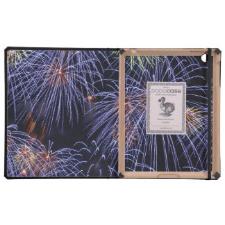 Firework Finale Cases For iPad