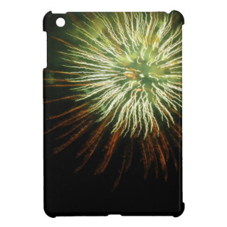 Firework iPad Mini Case 2