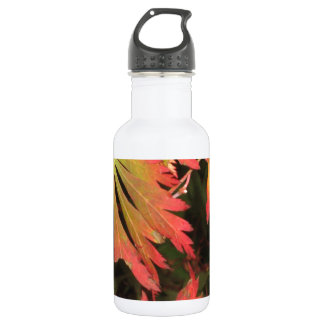 Firework Leaves 532 Ml Water Bottle