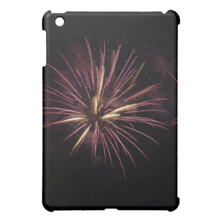 Fireworks 91 iPad mini cases