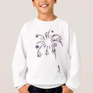 Fireworks America USA National Flag Independence D Sweatshirt