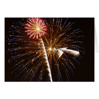 Fireworks display on Savannah River 2 Card