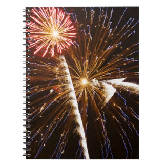 Fireworks display on Savannah River 2 Notebook