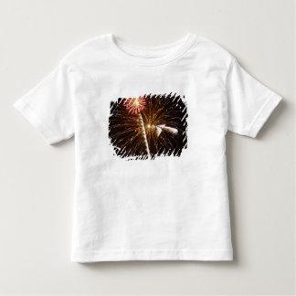 Fireworks display on Savannah River 2 Toddler T-Shirt