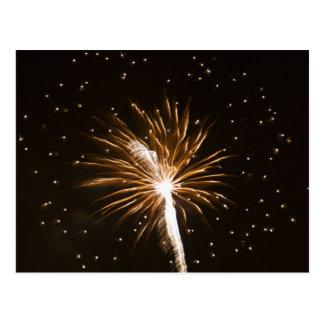 Fireworks display on Savannah River Postcard