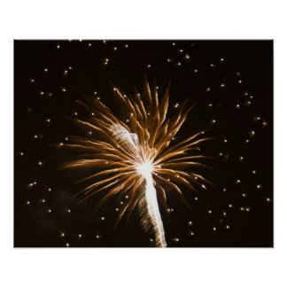 Fireworks display on Savannah River Poster