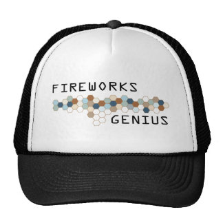 Fireworks Genius Mesh Hats