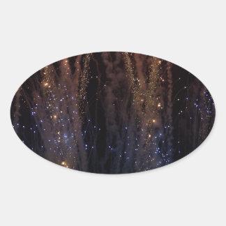Fireworks Light the Sky Fourth of July Oval Sticker