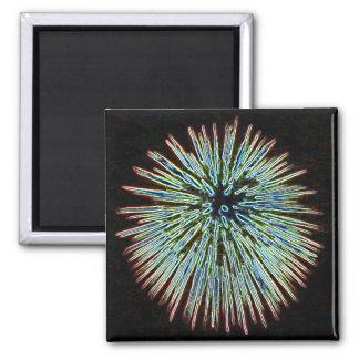 Fireworks Teal magnet
