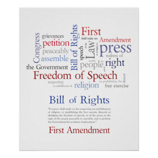 First Amendment Rights - Free Speech  / Expression Poster