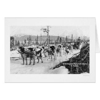 First Dog Team Alaska 1910 Greeting Card