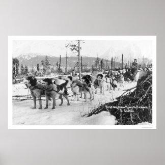 First Dog Team Alaska 1910 Print