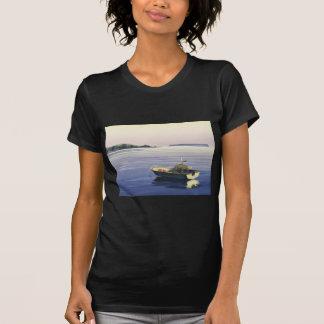 First Light - Plimmerton,& Mana island T Shirts