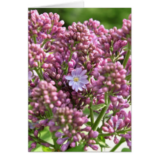 First Lilac Flower with twelve petals by BestPeopl Greeting Card