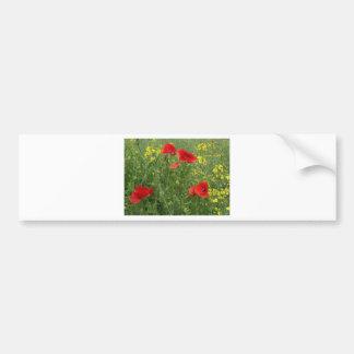 First Poppies Bumper Sticker