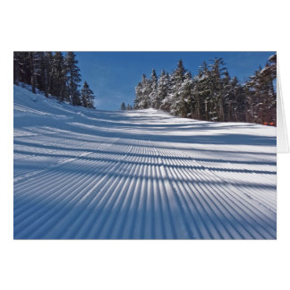 First ski tracks card