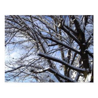 First Snow Postcards