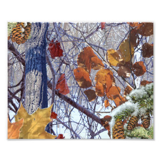 First Snow Winter Camouflage Print Art Photo