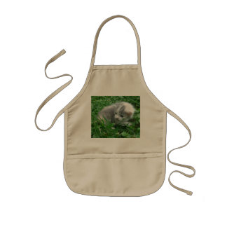 First Time Outside Kids Apron