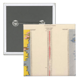 Fiscal Chart, Statistical US Lithograph 15 Cm Square Badge
