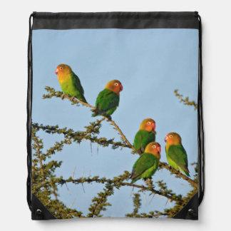 Fischer s Lovebirds Agapornis fischeri Drawstring Backpacks
