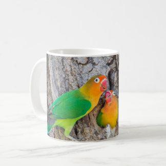 Fischer's Lovebird Mates Coffee Mug