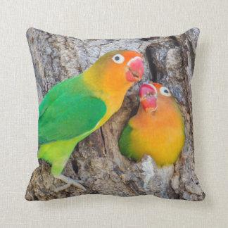 Fischer's Lovebird Mates Cushion