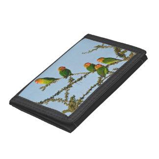 Fischer's Lovebirds (Agapornis fischeri) Trifold Wallet