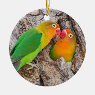 Fischer's Lovebirds kissing, Africa Round Ceramic Decoration