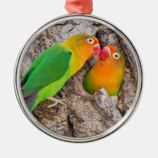 Fischer's Lovebirds kissing, Africa Silver-Colored Round Decoration
