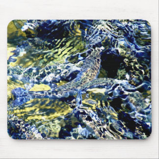 Fish10by8 Mouse Mat