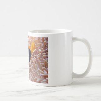 fish-001 mug